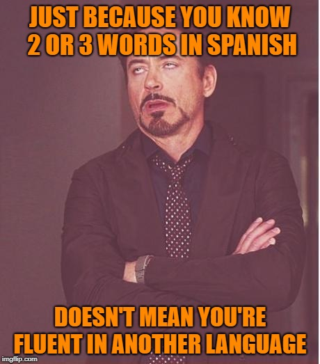That face you make | JUST BECAUSE YOU KNOW 2 OR 3 WORDS IN SPANISH DOESN'T MEAN YOU'RE FLUENT IN ANOTHER LANGUAGE | image tagged in that face you make,funny memes,memes,language,translator | made w/ Imgflip meme maker