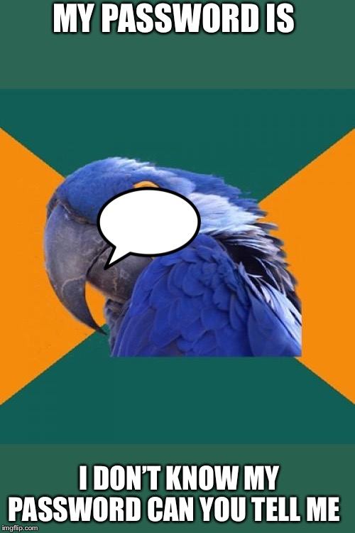 Paranoid Parrot | MY PASSWORD IS I DON'T KNOW MY PASSWORD CAN YOU TELL ME | image tagged in memes,paranoid parrot | made w/ Imgflip meme maker