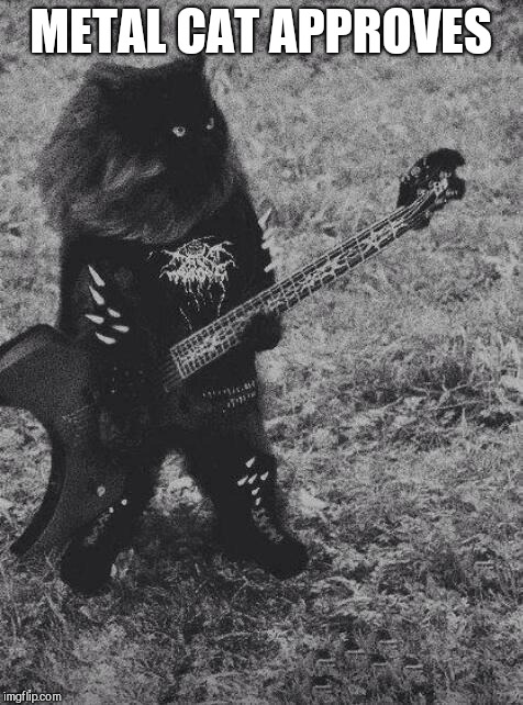 Black Metal Cat | METAL CAT APPROVES | image tagged in black metal cat | made w/ Imgflip meme maker