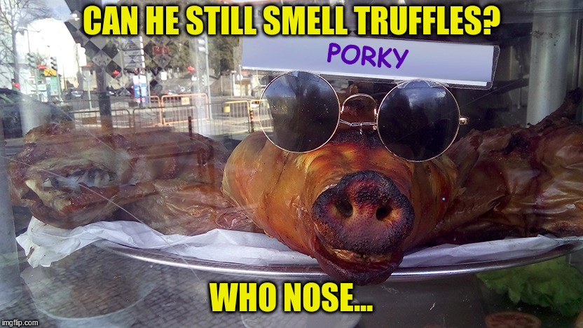 "From the guy who brought you ""French Fry"" and ""Helicopter Dog Walking"" 