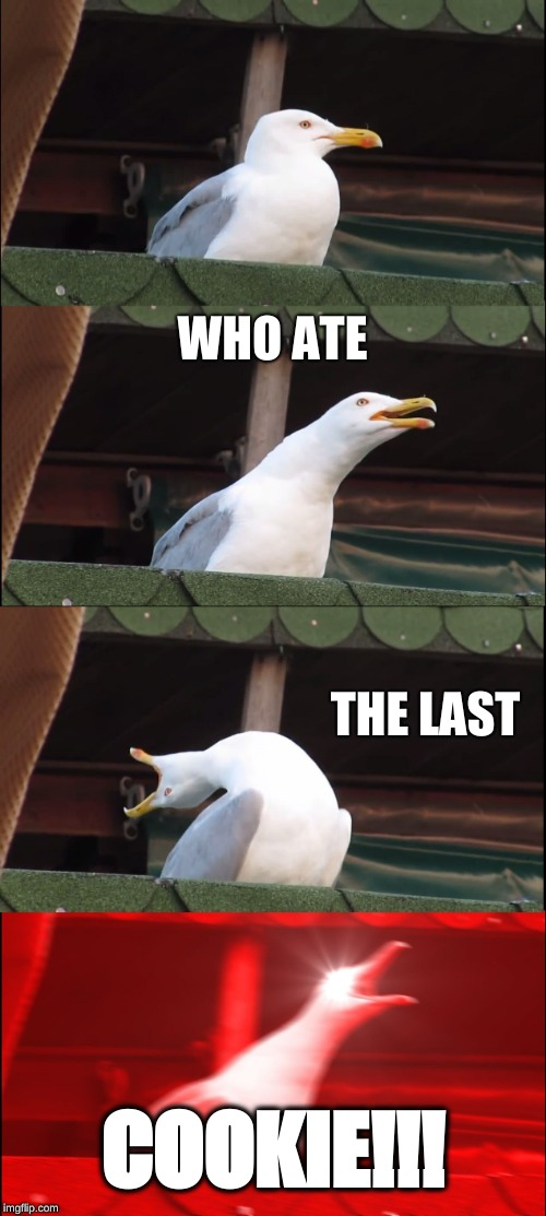 Crumbling Rage | WHO ATE THE LAST COOKIE!!! | image tagged in memes,inhaling seagull,cookies | made w/ Imgflip meme maker