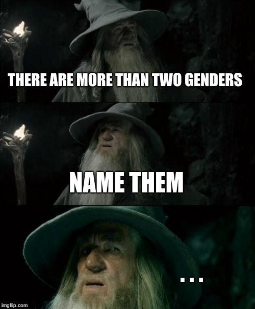 Confused Gandalf Meme | THERE ARE MORE THAN TWO GENDERS NAME THEM . . . | image tagged in memes,confused gandalf | made w/ Imgflip meme maker