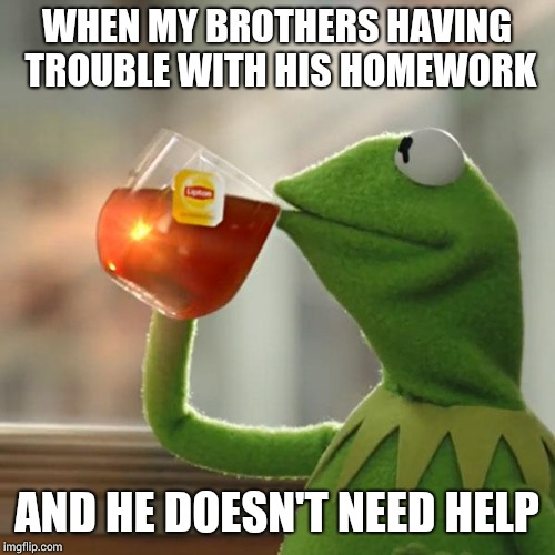 But Thats None Of My Business Meme | WHEN MY BROTHERS HAVING TROUBLE WITH HIS HOMEWORK AND HE DOESN'T NEED HELP | image tagged in memes,but thats none of my business,kermit the frog | made w/ Imgflip meme maker