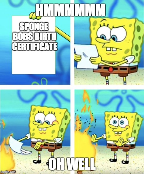 Spongebob Burning Paper | SPONGE BOBS BIRTH CERTIFICATE OH WELL HMMMMMM | image tagged in spongebob burning paper | made w/ Imgflip meme maker