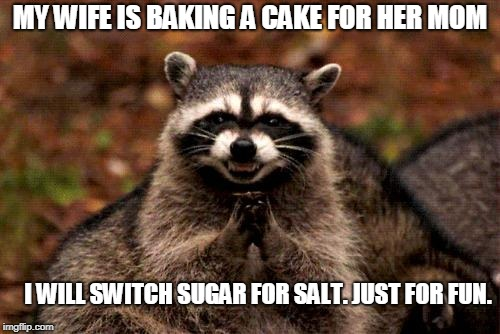 Evil Plotting Raccoon | MY WIFE IS BAKING A CAKE FOR HER MOM I WILL SWITCH SUGAR FOR SALT. JUST FOR FUN. | image tagged in memes,evil plotting raccoon | made w/ Imgflip meme maker