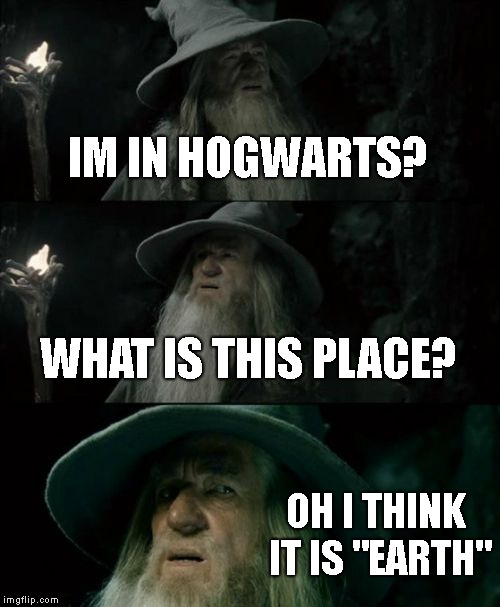 "Confused Gandalf Meme | IM IN HOGWARTS? WHAT IS THIS PLACE? OH I THINK IT IS ""EARTH"" 