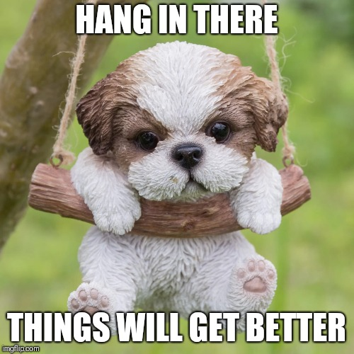 Depression Hurts | HANG IN THERE THINGS WILL GET BETTER | image tagged in depression,cute puppies,puppy,sad,shih tzu | made w/ Imgflip meme maker