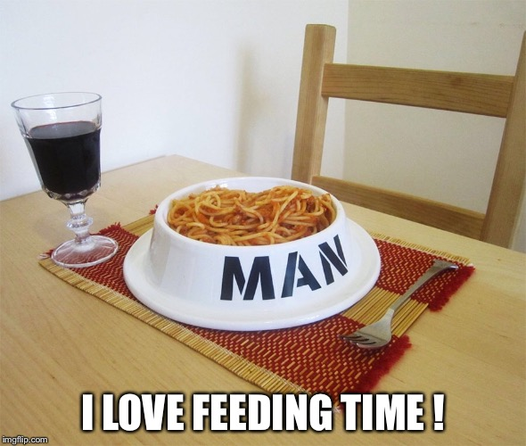 I LOVE FEEDING TIME ! | image tagged in bowl | made w/ Imgflip meme maker
