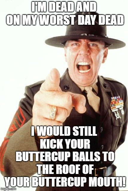 suck it up buttercup | I'M DEAD AND ON MY WORST DAY DEAD I WOULD STILL KICK YOUR BUTTERCUP BALLS TO THE ROOF OF YOUR BUTTERCUP MOUTH! | image tagged in r lee ermey | made w/ Imgflip meme maker