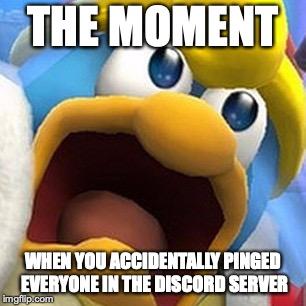 King Dedede oh shit face | THE MOMENT WHEN YOU ACCIDENTALLY PINGED EVERYONE IN THE DISCORD SERVER | image tagged in king dedede oh shit face | made w/ Imgflip meme maker