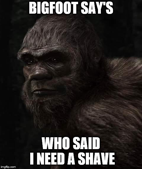 bigfoot say's | BIGFOOT SAY'S WHO SAID I NEED A SHAVE | image tagged in bigfoot,memes,meme,funny animals,shave,funny memes | made w/ Imgflip meme maker