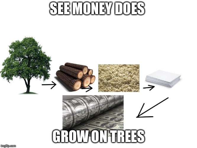 money does grow on trees  | SEE MONEY DOES GROW ON TREES | image tagged in money,trees | made w/ Imgflip meme maker