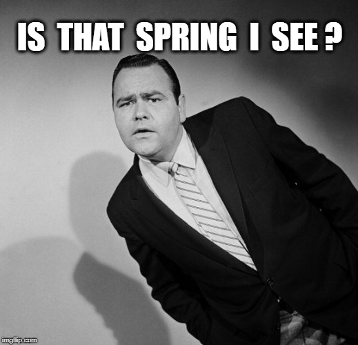 Jonathon Winters | IS  THAT  SPRING  I  SEE ? | image tagged in jonathon winters | made w/ Imgflip meme maker