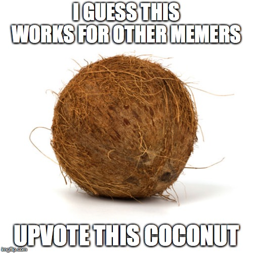 I can't think of any meme ideas... | I GUESS THIS WORKS FOR OTHER MEMERS UPVOTE THIS COCONUT | image tagged in coconut | made w/ Imgflip meme maker