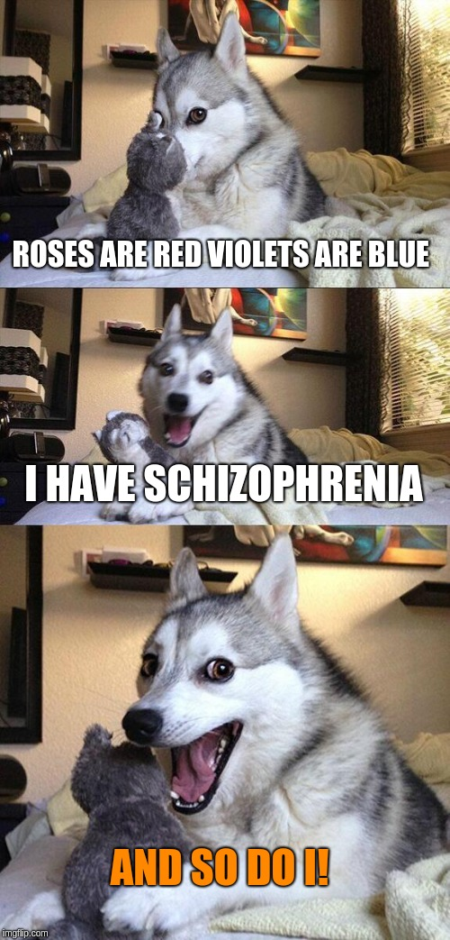 Bad Pun Dog Meme | ROSES ARE RED VIOLETS ARE BLUE I HAVE SCHIZOPHRENIA AND SO DO I! | image tagged in memes,bad pun dog | made w/ Imgflip meme maker