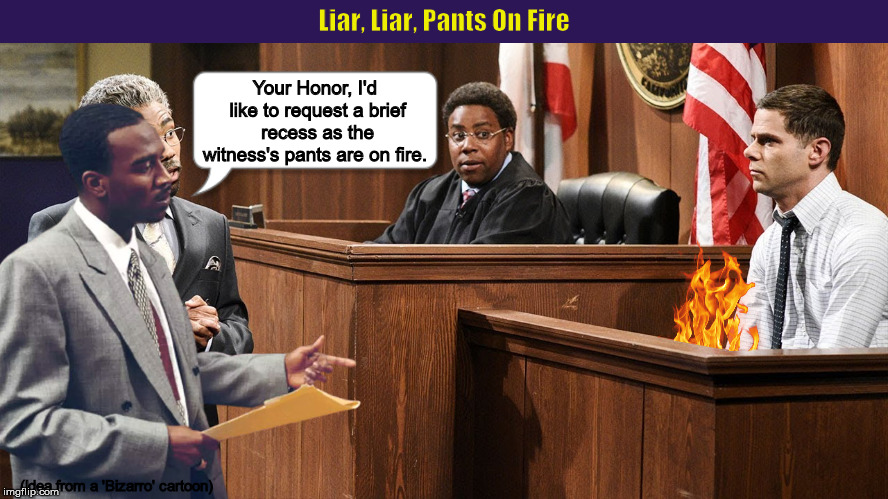 Liar, Liar, Pants On Fire | image tagged in liar liar pants on fire,witness,attorney,funny,memes,fire | made w/ Imgflip meme maker