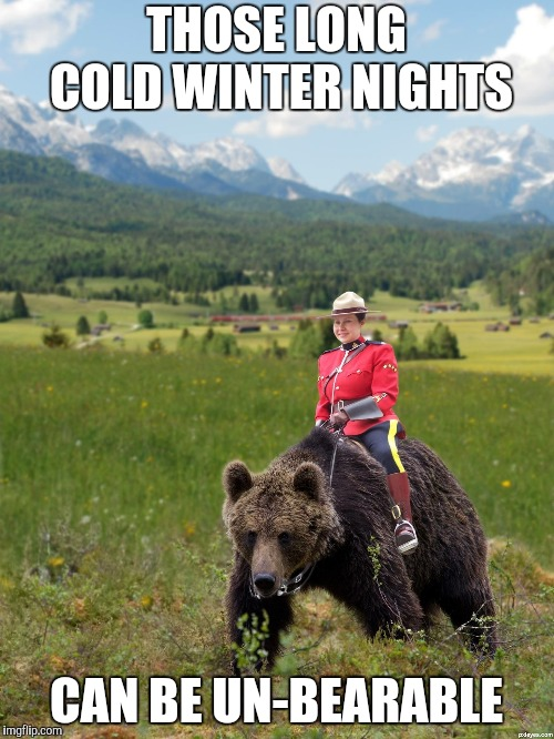 Canada | THOSE LONG COLD WINTER NIGHTS CAN BE UN-BEARABLE | image tagged in canada | made w/ Imgflip meme maker