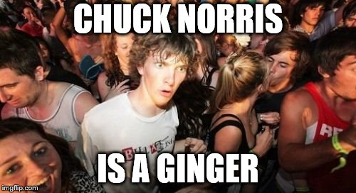 Sudden Clarity Clarence Meme | CHUCK NORRIS IS A GINGER | image tagged in memes,sudden clarity clarence | made w/ Imgflip meme maker
