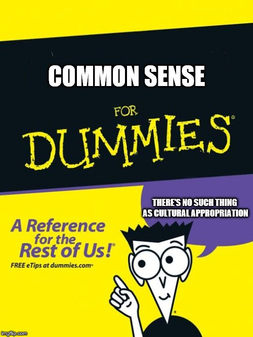For dummies book |  COMMON SENSE; THERE'S NO SUCH THING AS CULTURAL APPROPRIATION | image tagged in for dummies book | made w/ Imgflip meme maker