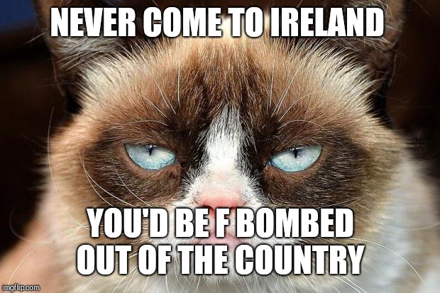Grumpy Cat Not Amused Meme | NEVER COME TO IRELAND YOU'D BE F BOMBED OUT OF THE COUNTRY | image tagged in memes,grumpy cat not amused,grumpy cat | made w/ Imgflip meme maker