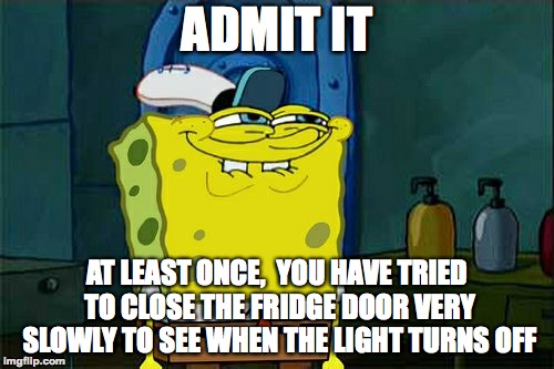 Don't You Squidward |  ADMIT IT; AT LEAST ONCE,  YOU HAVE TRIED TO CLOSE THE FRIDGE DOOR VERY SLOWLY TO SEE WHEN THE LIGHT TURNS OFF | image tagged in memes,dont you squidward,spongebob,funny,admit it,memelord344 | made w/ Imgflip meme maker