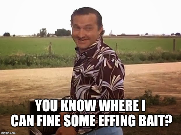cousin eddie vacation | YOU KNOW WHERE I CAN FINE SOME EFFING BAIT? | image tagged in cousin eddie vacation | made w/ Imgflip meme maker
