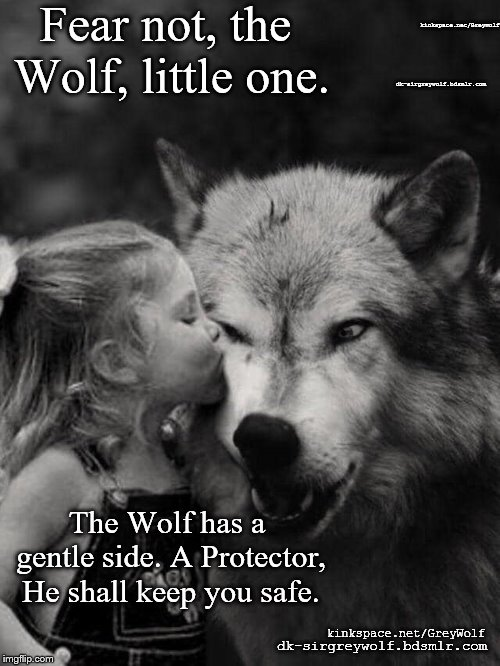Fear not, the Wolf. | Fear not, the Wolf, little one. The Wolf has a gentle side. A Protector, He shall keep you safe. kinkspace.net/GreyWolf dk-sirgreywolf.bdsml | image tagged in wolf,kink,dd/lg,bdsm,lifestyle | made w/ Imgflip meme maker