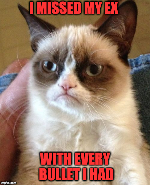 I just need more practice | I MISSED MY EX WITH EVERY BULLET I HAD | image tagged in memes,grumpy cat | made w/ Imgflip meme maker