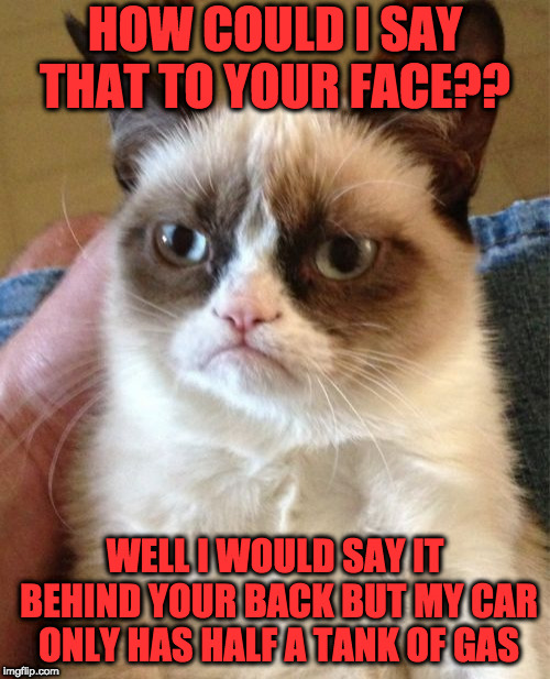 When You're Trying to be Nice But Their Fat Rude Personality Gets the Best of You | HOW COULD I SAY THAT TO YOUR FACE?? WELL I WOULD SAY IT BEHIND YOUR BACK BUT MY CAR ONLY HAS HALF A TANK OF GAS | image tagged in memes,grumpy cat | made w/ Imgflip meme maker