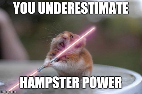 Star Wars hamster | YOU UNDERESTIMATE HAMPSTER POWER | image tagged in star wars hamster | made w/ Imgflip meme maker