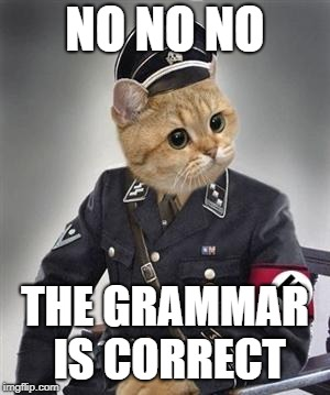 Grammar Nazi Cat | NO NO NO THE GRAMMAR IS CORRECT | image tagged in grammar nazi cat | made w/ Imgflip meme maker