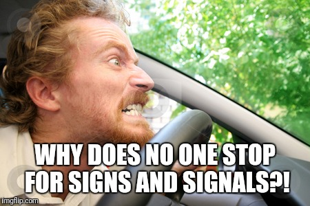 Bad Driver | WHY DOES NO ONE STOP FOR SIGNS AND SIGNALS?! | image tagged in bad driver | made w/ Imgflip meme maker