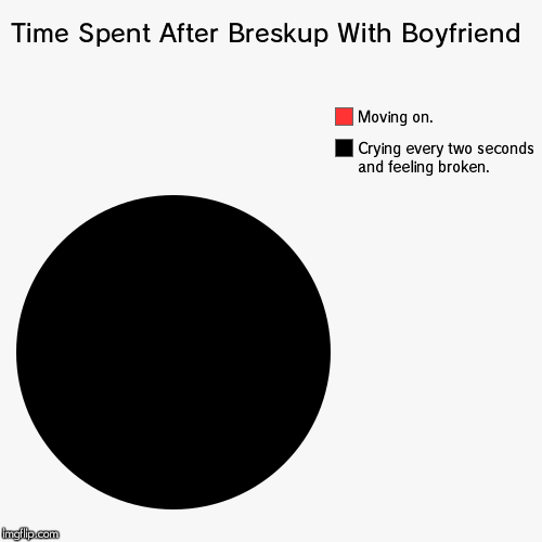 Time Spent After Breskup With Boyfriend | Crying every two seconds and feeling broken., Moving on. | image tagged in funny,pie charts | made w/ Imgflip chart maker