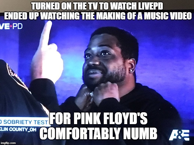 TURNED ON THE TV TO WATCH LIVEPD ENDED UP WATCHING THE MAKING OF A MUSIC VIDEO FOR PINK FLOYD'S COMFORTABLY NUMB | image tagged in livepd stoned | made w/ Imgflip meme maker