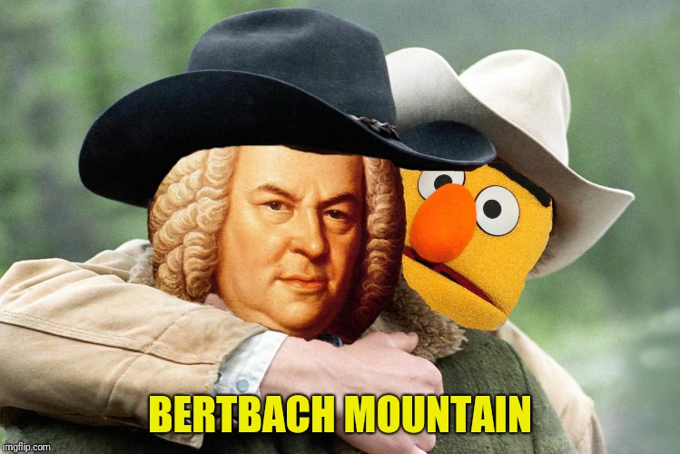 BERTBACH MOUNTAIN | made w/ Imgflip meme maker