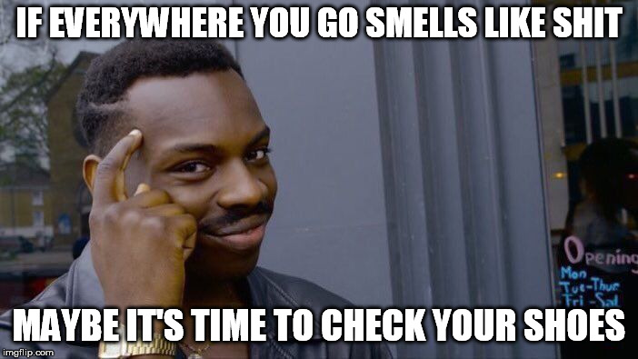 Roll Safe Think About It | IF EVERYWHERE YOU GO SMELLS LIKE SHIT MAYBE IT'S TIME TO CHECK YOUR SHOES | image tagged in memes,roll safe think about it | made w/ Imgflip meme maker