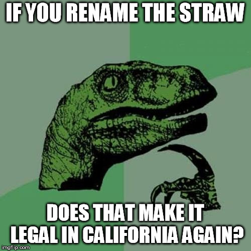 Philosoraptor Meme | IF YOU RENAME THE STRAW DOES THAT MAKE IT LEGAL IN CALIFORNIA AGAIN? | image tagged in memes,philosoraptor | made w/ Imgflip meme maker