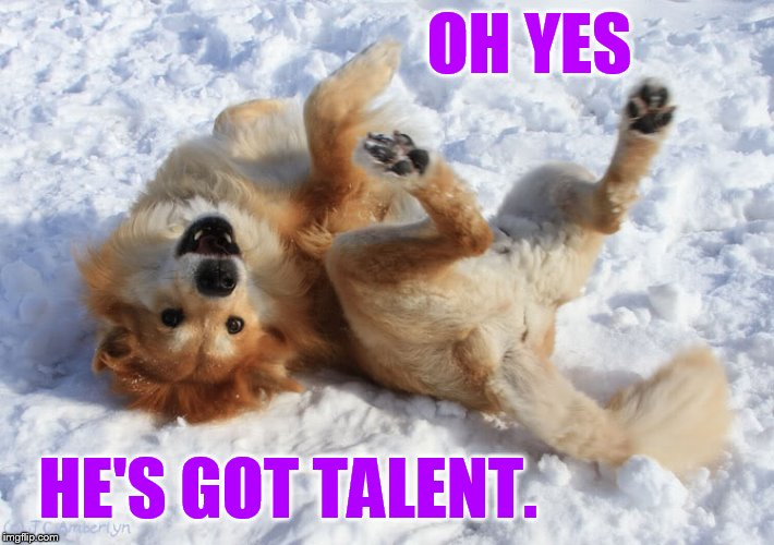 OH YES HE'S GOT TALENT. | made w/ Imgflip meme maker