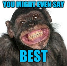Grinning Chimp | YOU MIGHT EVEN SAY BEST | image tagged in grinning chimp | made w/ Imgflip meme maker