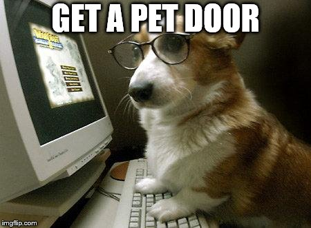 Smart Dog | GET A PET DOOR | image tagged in smart dog | made w/ Imgflip meme maker