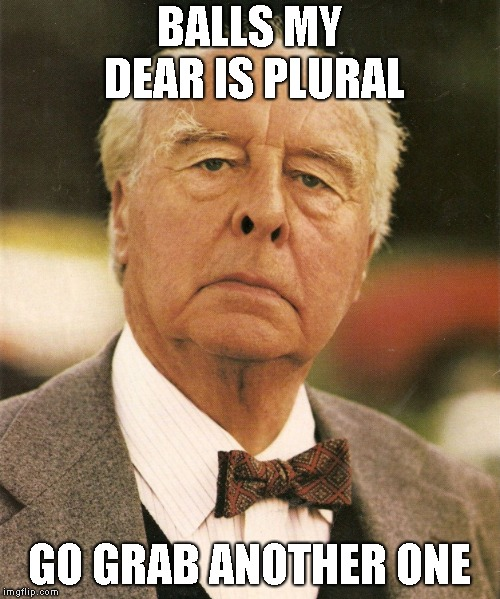 My Grandfather | BALLS MY DEAR IS PLURAL GO GRAB ANOTHER ONE | image tagged in my grandfather | made w/ Imgflip meme maker