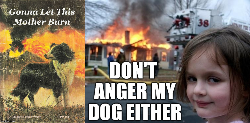 They like to set fires when angry. | DON'T ANGER MY DOG EITHER | image tagged in evil girl fire,fire and fury,pyro,angry dog,dark humor,firefighter | made w/ Imgflip meme maker