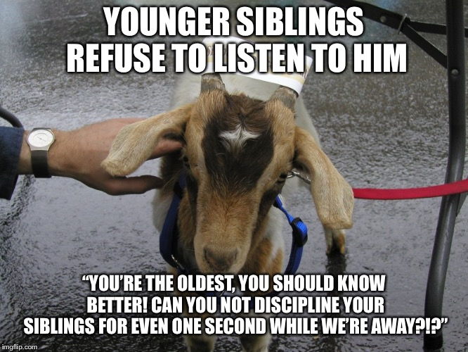 "Yeah, like it's my fault they're hardheaded, rebellious little gits! | YOUNGER SIBLINGS REFUSE TO LISTEN TO HIM ""YOU'RE THE OLDEST, YOU SHOULD KNOW BETTER! CAN YOU NOT DISCIPLINE YOUR SIBLINGS FOR EVEN ONE SECON 