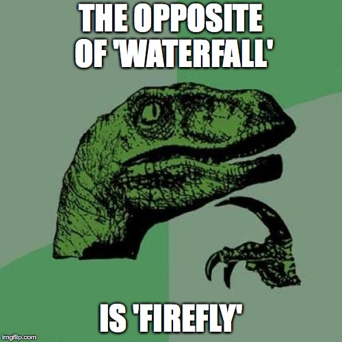 Philosoraptor Meme | THE OPPOSITE OF 'WATERFALL' IS 'FIREFLY' | image tagged in memes,philosoraptor | made w/ Imgflip meme maker