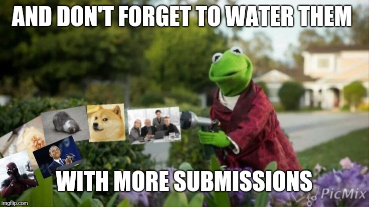 AND DON'T FORGET TO WATER THEM WITH MORE SUBMISSIONS | made w/ Imgflip meme maker