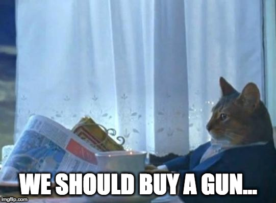 Cat newspaper | WE SHOULD BUY A GUN... | image tagged in cat newspaper,AdviceAnimals | made w/ Imgflip meme maker