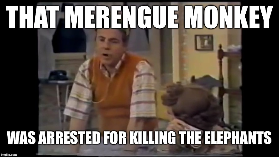 Cool Bullshit Tim Conway | THAT MERENGUE MONKEY WAS ARRESTED FOR KILLING THE ELEPHANTS | image tagged in cool bullshit tim conway | made w/ Imgflip meme maker