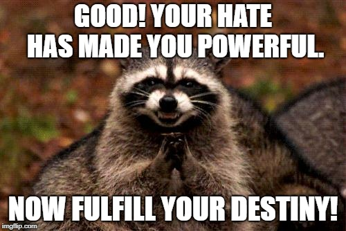 Evil Plotting Raccoon Meme | GOOD! YOUR HATE HAS MADE YOU POWERFUL. NOW FULFILL YOUR DESTINY! | image tagged in memes,evil plotting raccoon | made w/ Imgflip meme maker