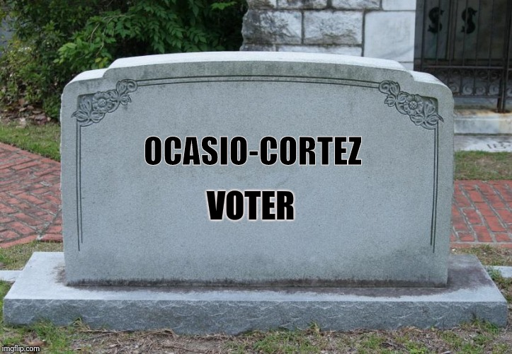 Blank Tombstone | OCASIO-CORTEZ VOTER | image tagged in blank tombstone | made w/ Imgflip meme maker