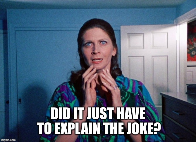 DID IT JUST HAVE TO EXPLAIN THE JOKE? | made w/ Imgflip meme maker